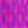 lila-pink